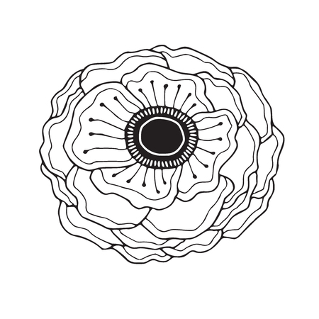 Anemone blossom illustration. Flower line art. Minimalistic Anemone flower. Coloring book page. Botanical decoration for invitation card, tattoo and boutique logo.