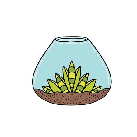 Succulent in glass container. Sticker design with green succulent plant. Interior nature print.
