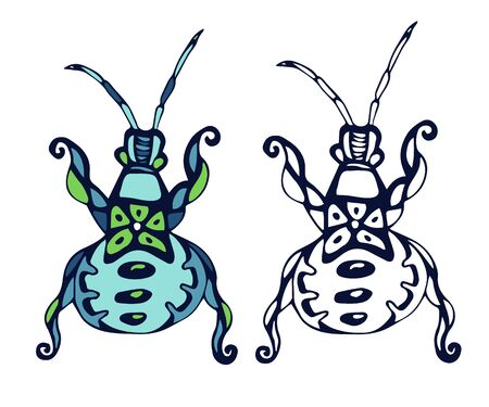Beetle vector illustration in outline and color vector design Ilustrace