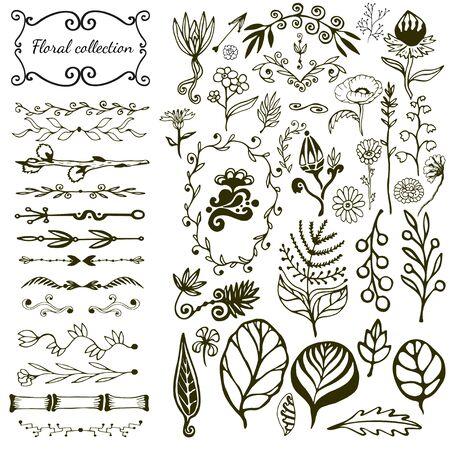 Grand ensemble floral dessiné à la main avec des fleurs sauvages, des feuilles, des tourbillons, une bordure. Vecteur avec collection d'éléments de la nature pour la décoration design Vecteurs