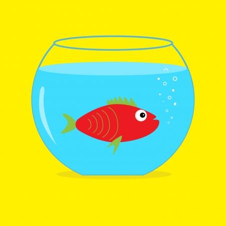 Red fish in the aquarium. Card.  Vector illustration Vector