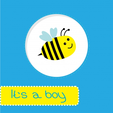 chap: Baby shower card with bee.   Its a boy. Vector illustration.