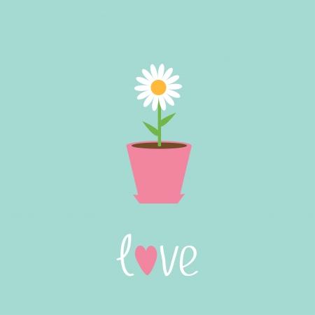 Daisy in pot. Love card. Vector illustration Illustration