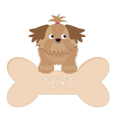 longhaired: Little glamour tan Shih Tzu dog and big bone. Isolated.  Illustration