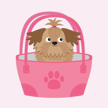 shih tzu: Little glamour tan Shih Tzu dog in the bag.  Illustration