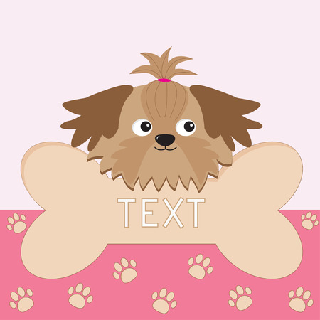 shih tzu: Little glamour tan Shih Tzu dogs head and big bone. Card. Paw print.