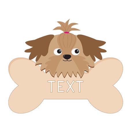 shih: Little glamour tan Shih Tzu dog�s head and big bone. Isolated. Vector illustration.