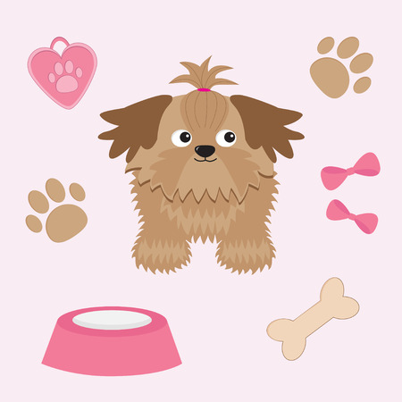 shih: Little glamour tan Shih Tzu and dog stuff. Vector illustration. Illustration