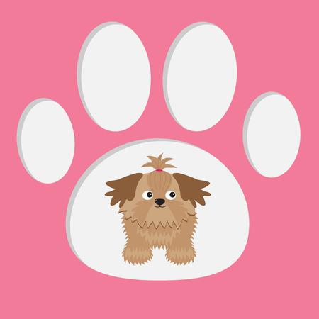 Little glamour tan Shih Tzu dog in the paw print. Card.  Vector