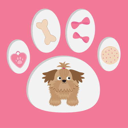 Little glamour tan Shih Tzu and dog�s stuff  in the paw print. Vector illustration. Vector