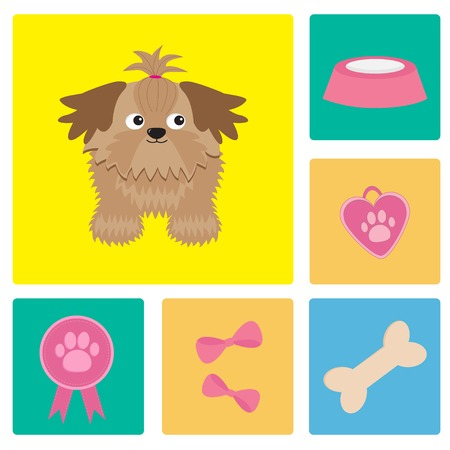 shih tzu: Dog Shih Tzu and dog stuff bow bone food medal award  Square icon set  Vector illustration