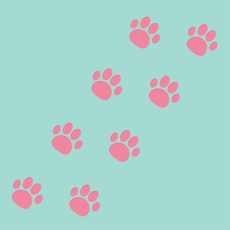 Paw print track diagonal. Blue and pink. Vector illustration Vector