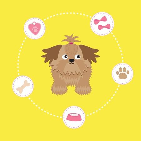 longhaired: Little glamour tan Shih Tzu and dog stuff. Dash line circle. Vector illustration.