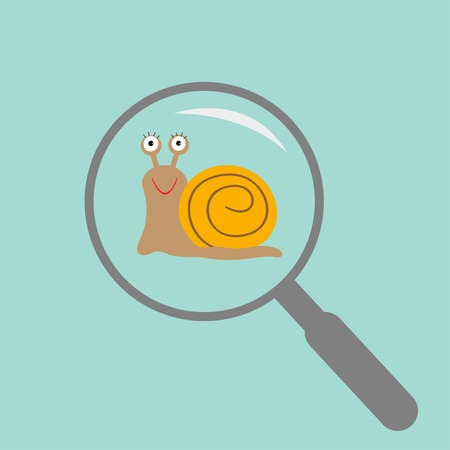 Snail insect under magnifier zoom lense. Flat design. Vector illustration Vector