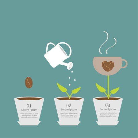grow: Coffee seed watering can cup plant in pot. Growth concept Three steps Flat design infographic. Vector illustration