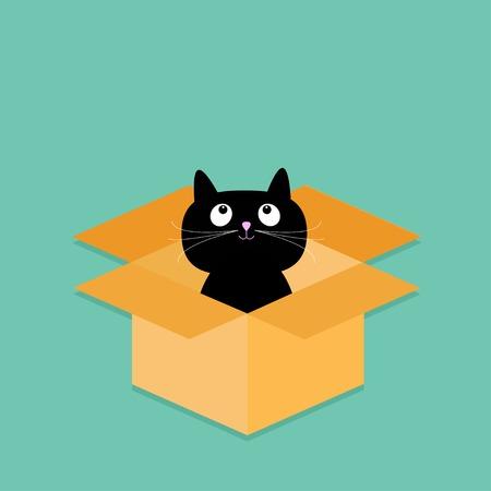 cat open: Cat inside opened cardboard package box. Flat design style. Vector illustration Illustration
