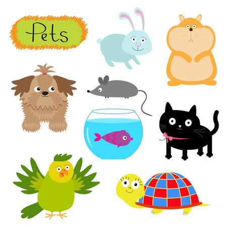 Vector pets illustration isolated Cute set White background Cat, dog, fish, hamster, parrot, turtle, rabbit Flat design Vector illustration