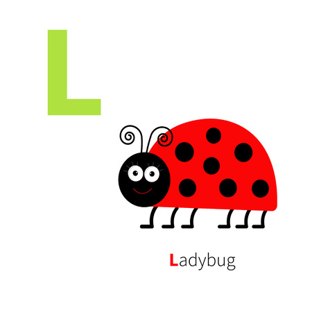 mariquitas: Letra L Zoo Ladybug alfabeto. Abc Inglés con tarjetas de animales de educación para los niños aislados Fondo blanco Diseño plano Vector ilustración Vectores
