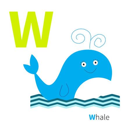 alfabeto con animales: Alfabeto Carta Zoo. Abc Inglés con tarjetas de animales de educación para los niños aislados Fondo blanco Diseño plano Vector ilustración