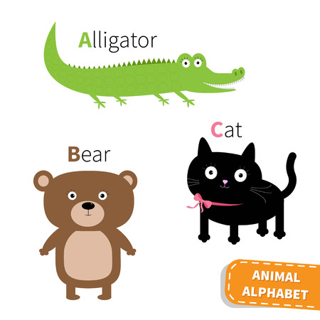 alligator cartoon: Letter A B C Alligator Cat Bear Zoo alphabet. English abc with animals Education cards for kids Isolated White background Flat design Vector illustration