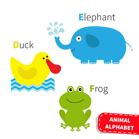 Letter D E F Duck Elephant Frog Zoo alphabet. English abc with animals Education cards for kids Isolated White background Flat design Vector illustration Illustration