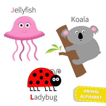 kids abc: Letter J K L Jellyfish Koala Ladybug Zoo alphabet. English abc with animals Education cards for kids Isolated White background Flat design Vector illustration