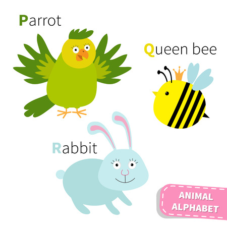loro: Carta PQR Loro reina abeja Conejo Zoo alfabeto. Abc Inglés con tarjetas de animales de educación para los niños aislados Fondo blanco Diseño plano Vector ilustración Vectores