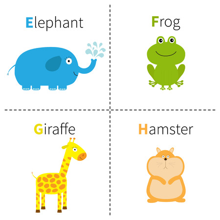 g giraffe: Letter E F G H Elephant Frog Giraffe Hamster Zoo alphabet. English abc with animals Education cards for kids Isolated White background Flat design Vector illustration