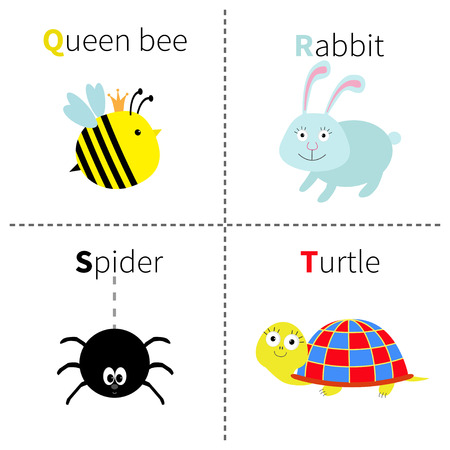 education cartoon: Letter Q R S T Queen bee Rabbit Spider Turtle Zoo alphabet. English abc with animals Education cards for kids Isolated White background Flat design Vector illustration Illustration