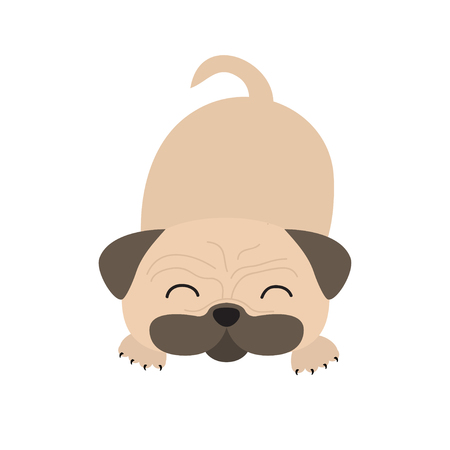 wite: Pug dog mops. Cute cartoon character. Flat design. Isolated. Wite background. Vector illustration