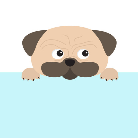 mops: Pug dog mops and paw. Cute cartoon character. Flat design. Isolated. Wite background. Vector illustration