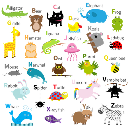 alligator: Zoo animal alphabet. Cute cartoon character set. Isolated. White design. Baby children education. Alligator, bear, cat, duck, elephant frog giraffe hamster iguana  Flat design Vector illustration