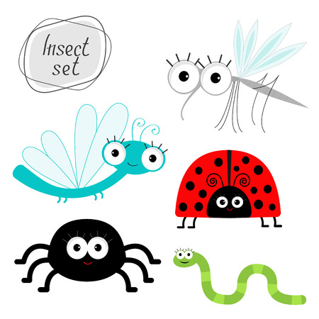 catarina caricatura: El sistema lindo insecto de la historieta. Mariquita, libélula, mosquitos, arañas y gusanos ilustración vectorial aislado