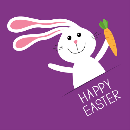carrot nose: Happy Easter. Bunny rabbit hare holding carrot Paper pocket. Baby greeting card. Violet background. Flat design. Vector illustration Illustration