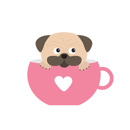 pug nose: Pug dog mops paw sitting in pink cup with heart. Cute cartoon character. Flat design. Isolated. White background. Vector illustration Illustration