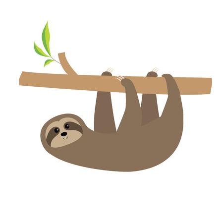 Sloth am Baumzweig hängen. Niedliche Cartoon-Figur. Wilde Joungle Tiersammlung. Baby-Bildung. Isoliert. Weißer Hintergrund. Flaches Design Vektor-Illustration Vektorgrafik