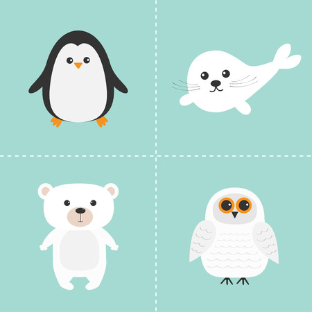 Arctic polar animal set. White bear, owl, penguin, Seal pup baby harp. Kids education cards. Blue background. Isolated. Flat design. Vector illustration