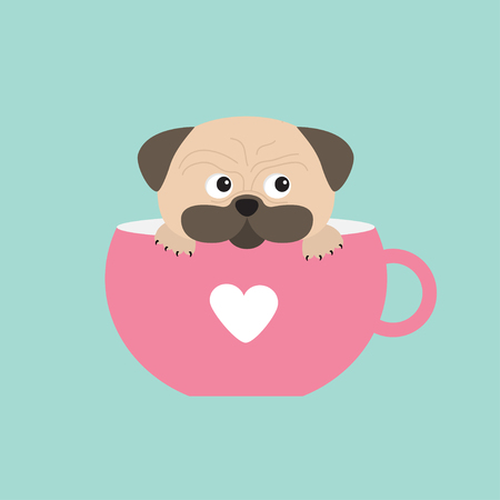 pug nose: Pug dog mops paw sitting in pink cup with heart. Cute cartoon character. Flat design. Isolated. Blue background. Vector illustration