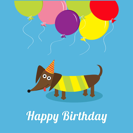 funny birthday: Dachshund dog with tongue. Striped shirt. Cute cartoon character. Balloons and hat. Happy Birthday greeting card. Flat design Vector illustration