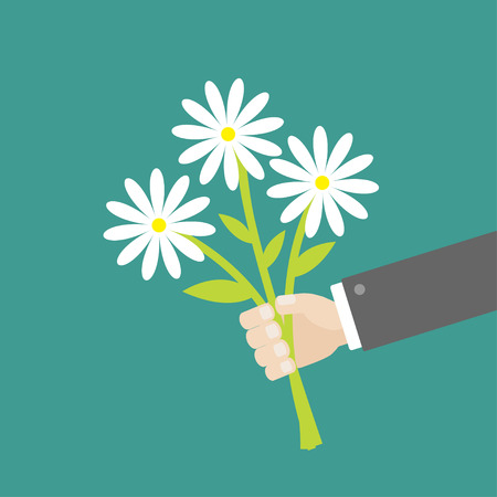 flower concept: Businessman hand holding bouquet of white daisy flowers. Flat design. Vector illustration