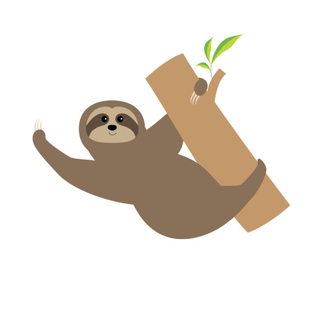 Sloth. Tree branch Cute cartoon character. Wild joungle animal collection. Baby education. Isolated. White background. Flat design Vector illustration