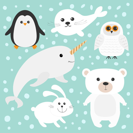 pup: Arctic polar animal set. White bear, owl, penguin, Seal pup baby harp hare rabbit narwhal unicorn-fish. Kids education cards. Blue background with snow flake Isolated. Flat design. illustration