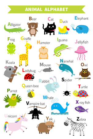 spider cartoon: Animal zoo alphabet. Cute cartoon character set. Isolated. White design. Baby children education. Alligator, bear, cat, duck, elephant frog giraffe hamster iguana Flat design Vector illustration