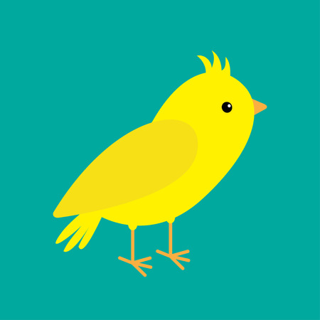 canary: Canary bird. Yellow feather. Green background. Flat design style. Vector illustration Illustration