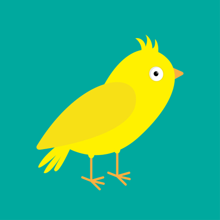 Yellow canary bird. Green background. Flat design style. Vector illustration