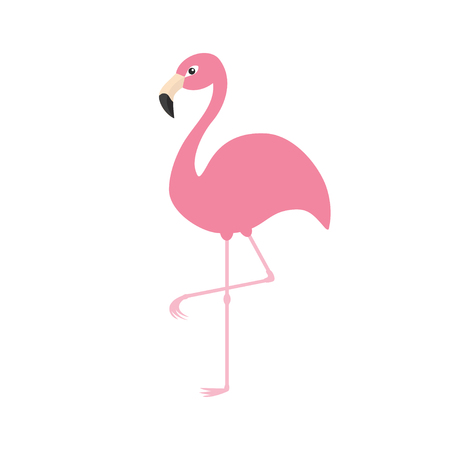 one animal: Pink flamingo on one leg. Exotic tropical bird. Zoo animal collection. Cute cartoon character. Decoration element. Flat design. White background. Isolated. Vector illustration