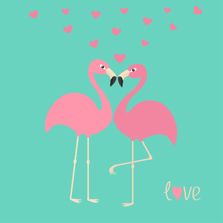 zoo cartoon: Pink flamingo couple and hearts. Exotic tropical bird. Zoo animal collection. Cute cartoon character. Love greeting card. Decoration element. Flat design. Blue background Isolated Vector illustration