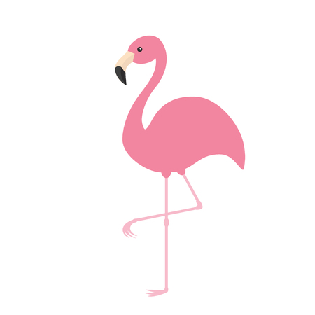 zoo cartoon: Pink flamingo. Exotic tropical bird. Zoo animal collection. Cute cartoon character. Decoration element. Flat design. White background. Isolated. Vector illustration