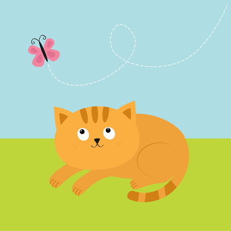 whisker: Cute red orange cat lying on grass and looking at flying pink butterfly. Dash line track in the sky. Mustache whisker. Funny cartoon character. Flat design. Vector illustration