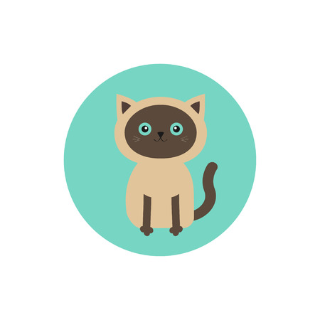 siamese: Siamese cat round circle icon in flat design style. Cute cartoon character. Happy sitting kitten with blue eyes. White background. Isolated. Vector illustration